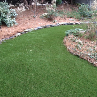 Inspiration for a small contemporary shade backyard landscaping in Raleigh.