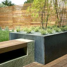 Modern Landscape by Feldman Architecture, Inc.