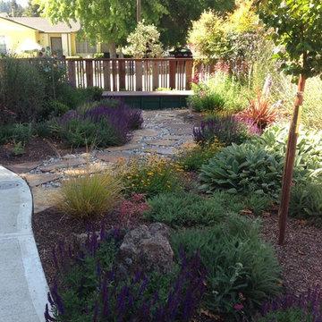 Felton pocket garden