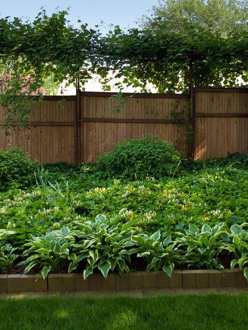 Design Ideas For A Mid Sized Modern Backyard Partial Sun Formal Garden Fall In