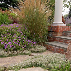 Contemporary Landscape by Fernhill Landscapes