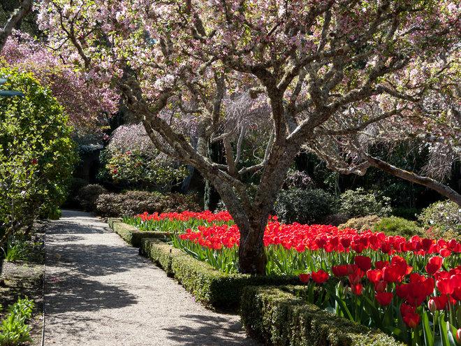 Traditional Landscape by Le jardinet