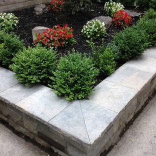 Idée De Décoration Pour Un Jardin En Pots Avant Minimaliste De Taille  Moyenne Et Lu0027