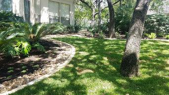 Finished Landscape in Shavano Park, San Antonio, Texas