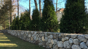 Finished wall planted with 'Green Giant' Arborvitae