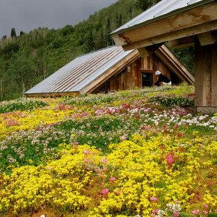 Idéer för en mellanstor rustik takterrass i delvis sol