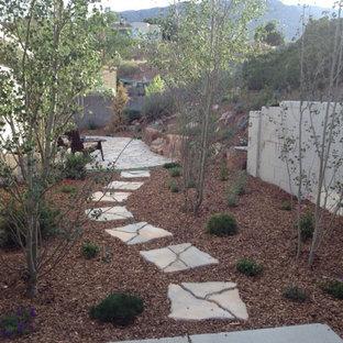 Immagine di un giardino stile americano esposto a mezz'ombra di medie dimensioni e sul tetto con un ingresso o sentiero e pavimentazioni in pietra naturale