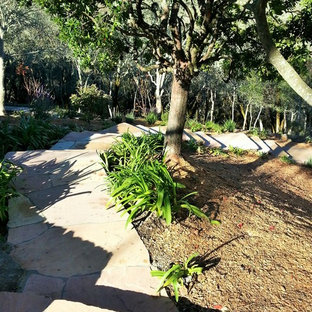 Photo of a large contemporary partial sun side yard stone garden path in San Francisco for summer.