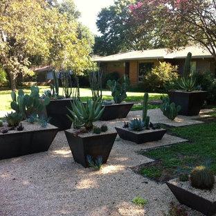 Idée de décoration pour un xéropaysage avant sud-ouest américain avec du gravier et une entrée ou une allée de jardin.