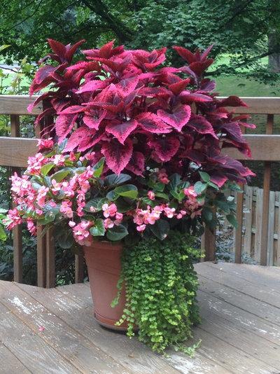 Классический Сад by Sylvan Gardens Landscape Contractors