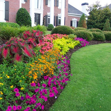 Flower Gardens in the South
