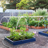 How to Grow the Edible Garden That's Right for You