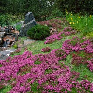 Asiatisk inredning av en trädgård, med en fontän