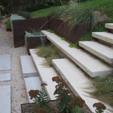 Modern Landscape by austin outdoor design