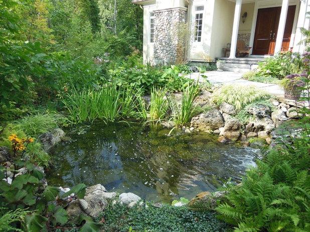 15 astuces pour am nager un bassin dans votre jardin for Poisson pour mare