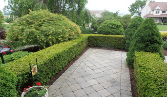 Formal entry with walkway and boxwood hedge