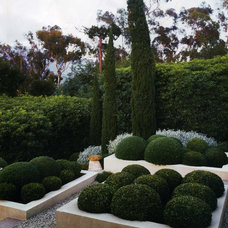 Traditional Landscape by Down To Earth Landscapes, Inc.