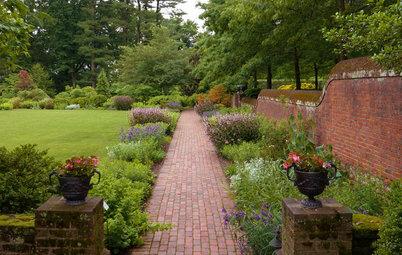 Native Gardens Outgrow Their 'Messy' Reputation
