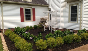 Formal Planting: Korean Boxwood and Blue Hydrangeas