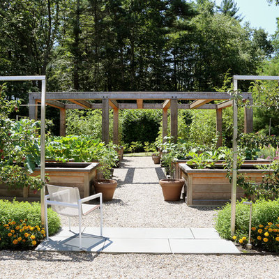 This is an example of a farmhouse full sun backyard gravel landscaping in Boston for summer.