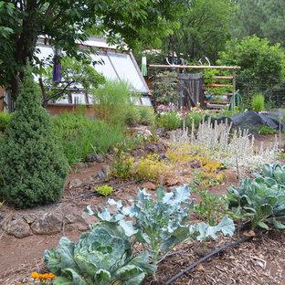 Идея дизайна: участок и сад в стиле рустика