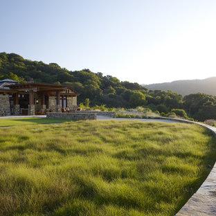 Photo of an expansive contemporary backyard garden in San Francisco.