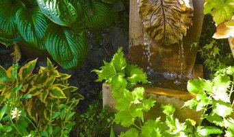 Fountain and Foliage