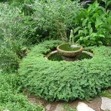 Traditional Landscape by Design To Live LLC