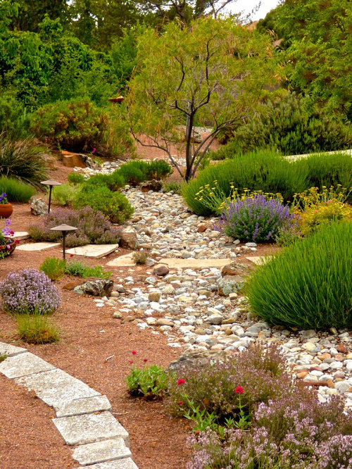 Southwestern albuquerque landscape ideas designs for Landscaping rocks albuquerque
