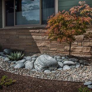 Ispirazione per un piccolo giardino xeriscape stile americano esposto in pieno sole davanti casa con sassi di fiume