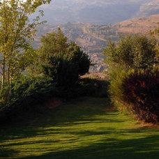 Mediterranean Landscape by Francis Landscapes