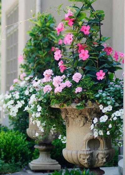 Klassisch Garten by Groundswell Design Group Inc.