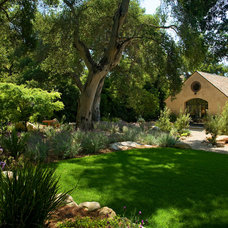 Mediterranean Landscape by Giffin & Crane General Contractors, Inc.
