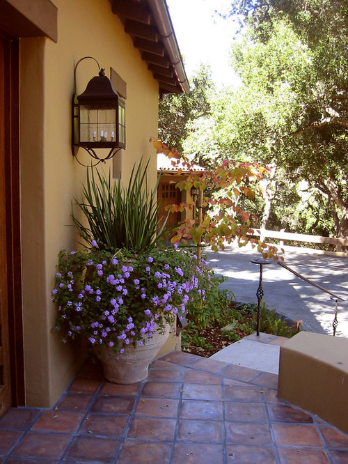 Lantana Landscaping Home Design Ideas Pictures Remodel