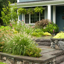 Gardens and landscape ideas
