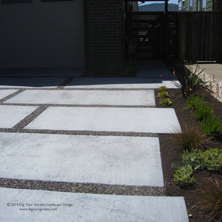 This is an example of a huge contemporary shade front yard concrete paver driveway in San Francisco for spring.