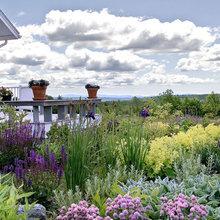 gardens & landscaping