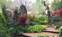 Front stroll garden, April, 2016