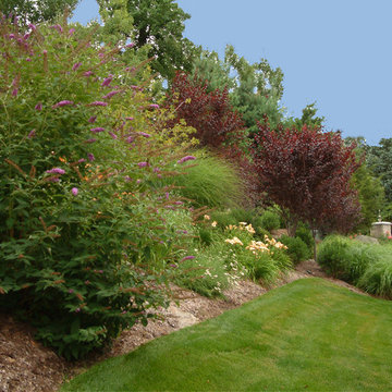 Front Yard Driveway and Planting Design