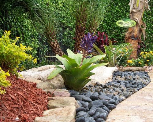 Best tropical drought tolerant landscape design ideas for Landscaping rocks broward county