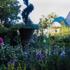 Greenart Landscape Designs Project Photos Reviews West Hollywood Ca Us Houzz