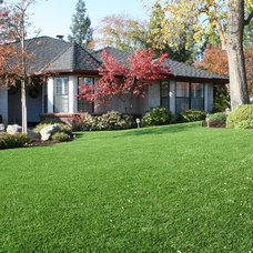 Contemporary Landscape by SYNLawn