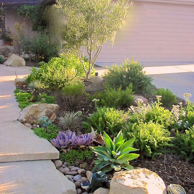 Design ideas for a contemporary landscaping in Orange County.
