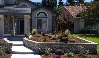 Frontyard Transformation II - After I