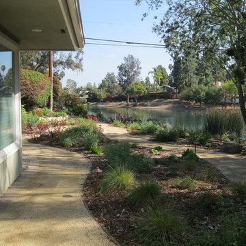 Fullerton Native/Low Water Front Yard