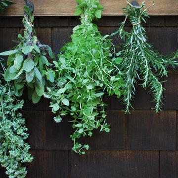 G A R D E N - Herb garden