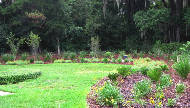Traditional Landscape by Your Florida Garden, Inc.