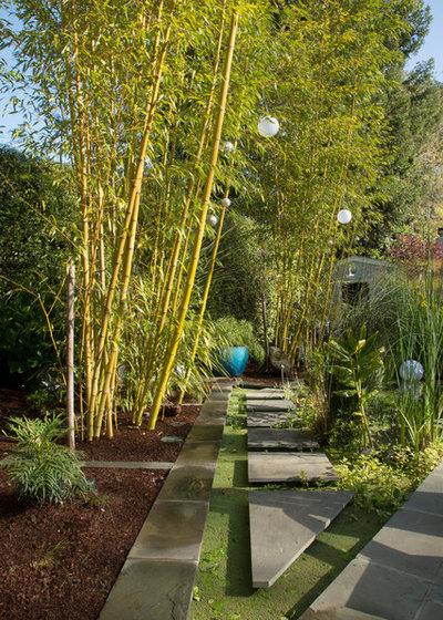 Tropical Garden by Margot Hartford Photography