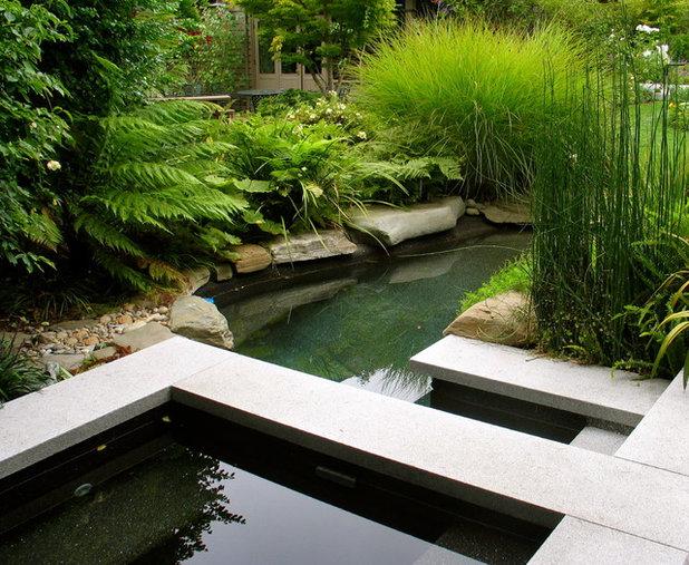 Come creare un laghetto in giardino spiegato dagli esperti - Costruire un laghetto in giardino ...