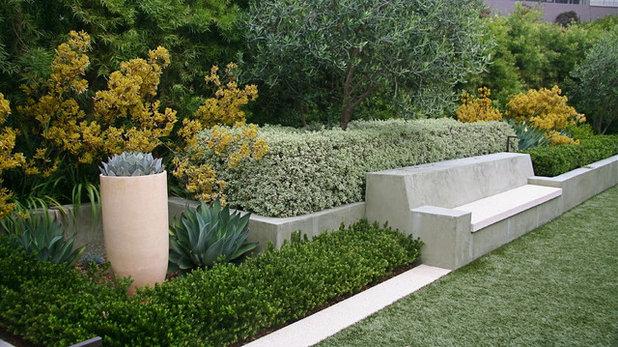 Moderne Jardin by Garden Architecture